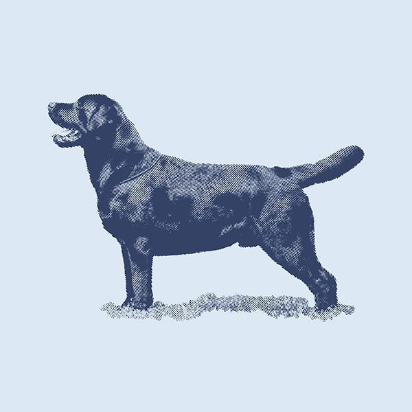 Dog_Icon-blue